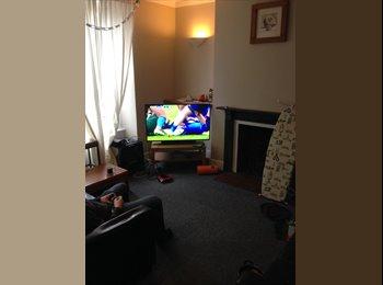 EasyRoommate UK - Clean & tidy spacious flat in great location for Whiteladies, Bristol - £500 pcm