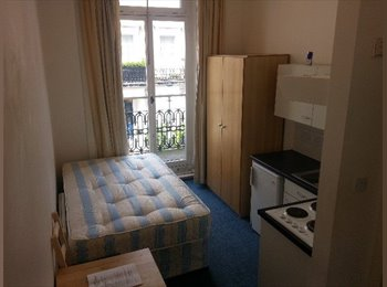 Large Single Semi-Studio with Direct Access to a Private...