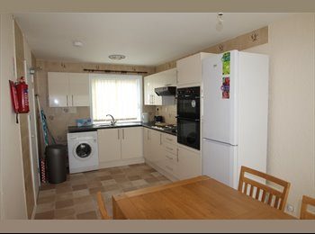 EasyRoommate UK - 2 Double Rooms - Professional - £95pw, Redditch - £411 pcm
