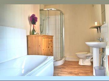 Room to Let, Wilkinson Street, Broomhill!