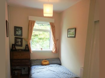 Room in large house available