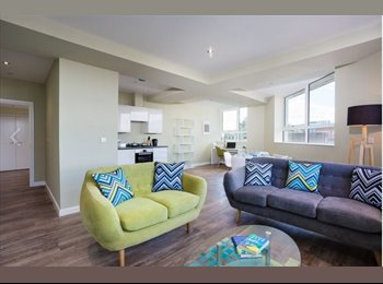 Flatmate needed for affordable penthouse apartment in...