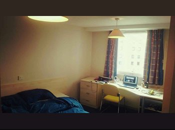 EasyRoommate UK - miss chen, Glasgow - £700 pcm