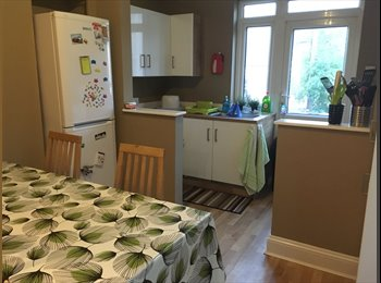 EasyRoommate UK - Double Room available only £290 a month! , Plymouth - £290 pcm