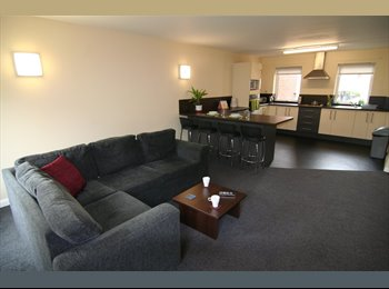 Centrally located student flat in Sheffield