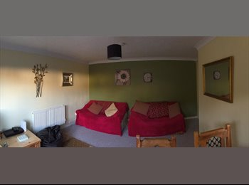 EasyRoommate UK - Large, Bright, Spacious, Double Room, Calmore - £450 pcm