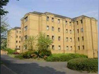 EasyRoommate UK - Winton Drive Student Accommodation, Glasgow - £450 pcm