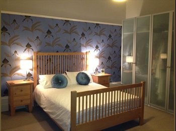EasyRoommate UK - Delightful Double Room in large southside flat, Glasgow - £450 pcm
