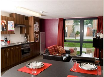 EasyRoommate UK - Room available at the pinnacles in sheffield, Sheffield - £450 pcm