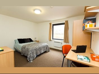 EasyRoommate UK - Deluxe double bed room, to move in asap, Sheffield - £408 pcm