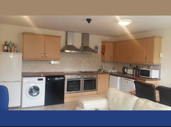 1 bedroom for rent in a flat on London Road
