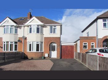 Room to let in shared house, North Worcester