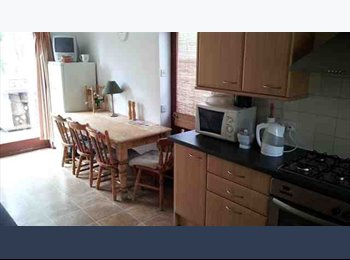 EasyRoommate UK - Single room, bills included in large,quiet Swiss style house in safe area next to campus 100pw, Reading - £435 pcm