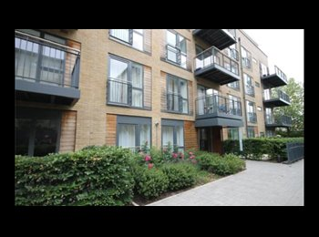 EasyRoommate UK - New Luxury Flat- int/utilities INCLUDED - Central Cambs Riverside, Cambridge - £700 pcm