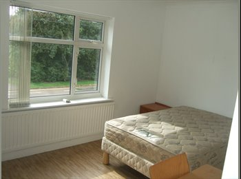 EasyRoommate UK - Lovely Large Double Room , Coventry - £550 pcm