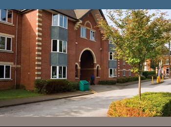 EasyRoommate UK - Liberty Court, Classic En-Suite Room for University of Birmingham Students Only, Birmingham - £504 pcm