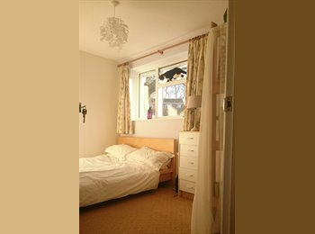 EasyRoommate UK - Gorgeous double room in friendly home, Southampton - £445 pcm