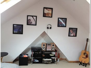 EasyRoommate UK - Excellent room - Roath - most sought after area! , Cardiff - £400 pcm