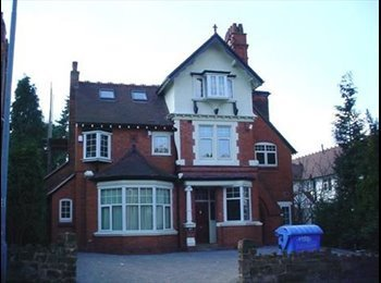 EasyRoommate UK - Double Room Moseley Friendly Houseshare, Birmingham - £476 pcm