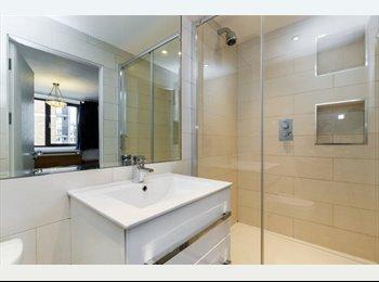 EasyRoommate UK - Beautiful large en suite double in Westminster, London - £1,200 pcm