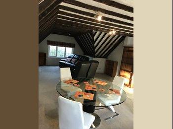 EasyRoommate UK - Double room en -suite,fully furniture, Addlestone - £790 pcm
