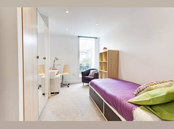 EasyRoommate UK - Student Room Available to Rent in Edinburgh!, Edinburgh - £584 pcm