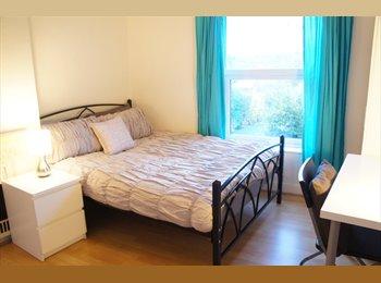 EasyRoommate UK - Lovely bedroom in friendly houseshare, Birmingham - £325 pcm