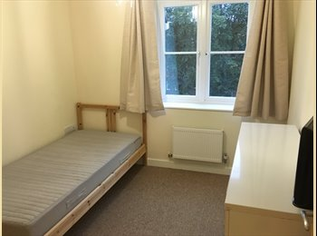 EasyRoommate UK - Double room and own bathroom available in 2 bedroom flat, Worthing - £425 pcm