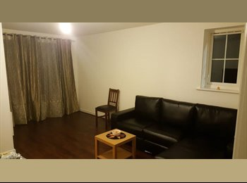 Spacious 1 Double bedroom for rent