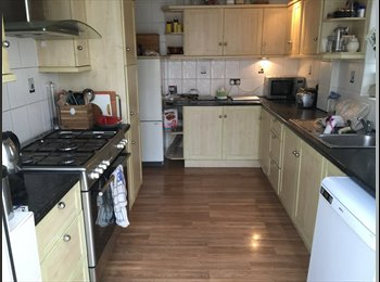 EasyRoommate UK - Double room in beautiful Southend home, Southend-on-Sea - £400 pcm