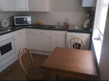 EasyRoommate UK - Room available in Southsea, Portsmouth - £325 pcm
