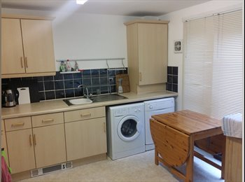 EasyRoommate UK - 2 double rooms. Bills included, Glasgow - £500 pcm