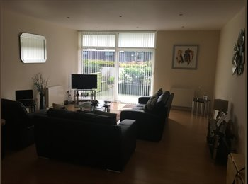 EasyRoommate UK - FLATMATE WANTED FOR STUNNING PROPERTY, Glasgow - £500 pcm