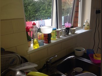 Room available to student in Bristol in lovely shared house