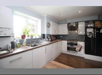 Spacious Double room / Gatwick, town location