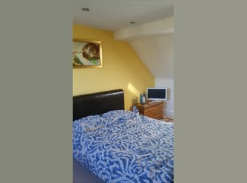 Large double attic room for rent