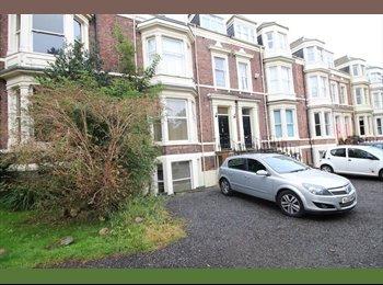 EasyRoommate UK - Single room available in Ashbrooke, Sunderland - £200 pcm