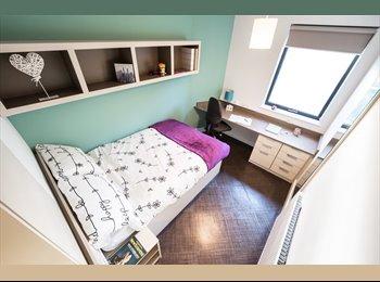 EasyRoommate UK - River View Ensuite Room in Twerton Mill, Bath - £624 pcm