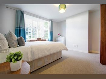 4 large double bedroom's to rent in Cowley