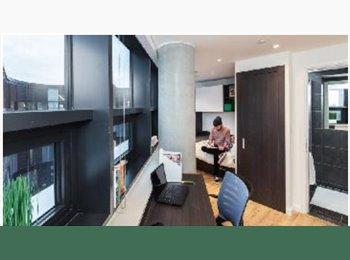 20% off on New Penthouse studio facing Big Ben, London Eye...