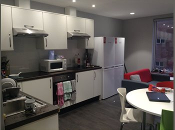 EasyRoommate UK - Room in student flat for rent, Chester - £580 pcm