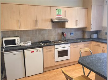 One room still available in 6 beds fully refurbished house
