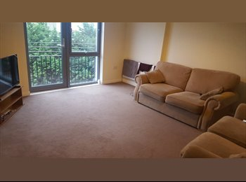 EasyRoommate UK - Room available close to shore, Edinburgh - £450 pcm