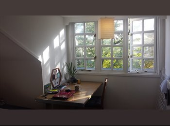Double room near London Road from end of November!!!