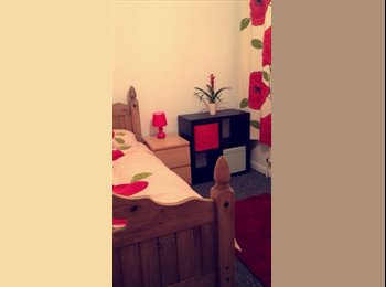 EasyRoommate UK - Single and double room to rent ALL BILLS INCLUDED, Bournemouth - £320 pcm
