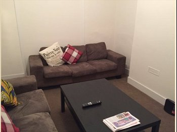Large double room in a friendly household!