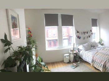 Short Term (4 months) Letting in a Cosy, Double Room in...
