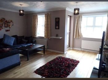 Room on the Tyne