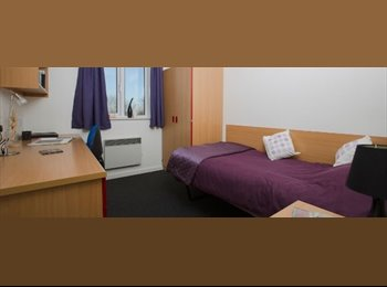 1 room available in Park Court