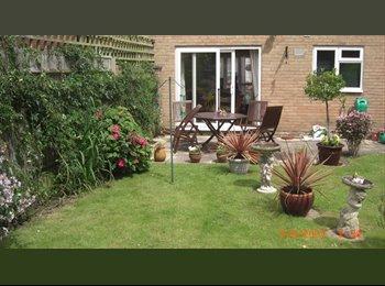 EasyRoommate UK - Room To Rent .  Monday - Friday, Netley - £425 pcm